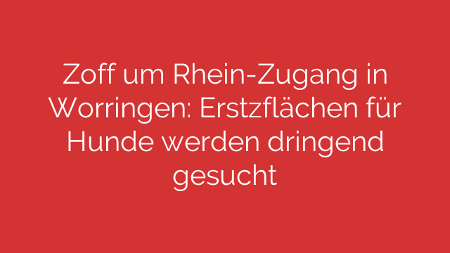 Zoff um Rhein-Zugang in Worringen: Erstzflächen für Hunde werden dringend gesucht