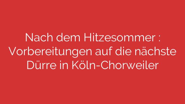 Nach dem Hitzesommer : Vorbereitungen auf die nächste Dürre in Köln-Chorweiler