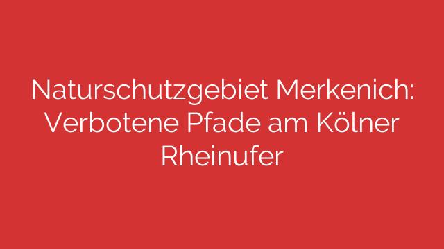 Naturschutzgebiet Merkenich: Verbotene Pfade am Kölner Rheinufer